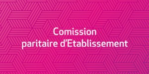 Commission Paritaire d'Etablissement